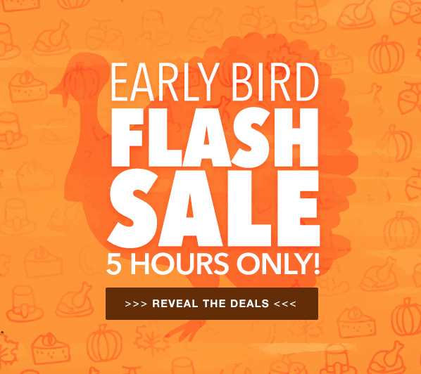 Early Bird Flash Sale