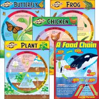 Life Cycles Learning Charts Combo Pack TEPT38934