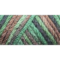 Caron Simply Soft Camo Yarn - Renegade Camo NOTM067144