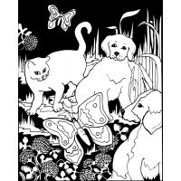 Color-In Velvet Poster   NOTM276406