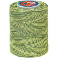 Star Mercerized Cotton Thread Variegated 1,200yd NOTM025740
