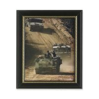 SKILCRAFT U.S. Military Army Frame Picture NSN4588210