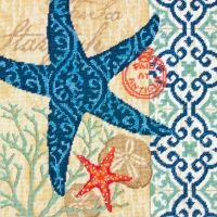 Starfish Needlepoint Kit NOTM050406