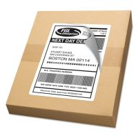 Avery Shipping Labels with TrueBlock Technology, Laser, 5.5 x 8.5, White, 1000/Box AVE95900