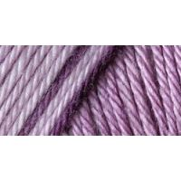Caron Simply Soft Ombres Yarn - Grape Purple NOTM067183