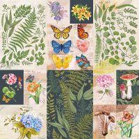"Bella Botanical Single-Sided Cardstock 180gsm 12""X12"" NOTM461567"