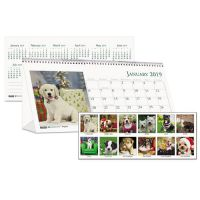 House of Doolittle Recycled Puppy Photos Desk Tent Monthly Calendar, 8 1/2 x 4 1/2, 2019 HOD3659