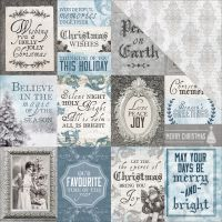 "Frosted Double-Sided Cardstock 12""X12"" NOTM382885"
