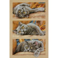 Max The Cat Counted Cross Stitch Kit NOTM051508