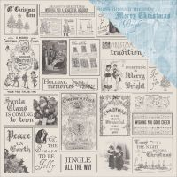 "Frosted Double-Sided Cardstock 12""X12"" NOTM382883"