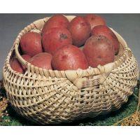 Blue Ridge Basket Kits NOTM211777