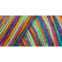 Caron Simply Soft Paints Yarn - Rainbow Bright NOTM065194