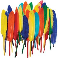 Creativity Street Duck Quill Feathers CKC4505