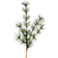 Austrian Weeping Pine Spray NOTM466373