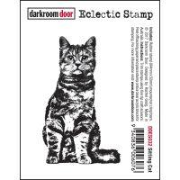 """Darkroom Door Cling Stamp 3""""X2"""" NOTM388705"""