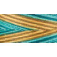 Signature 41 Cotton Variegated Colors 700yd NOTM039359