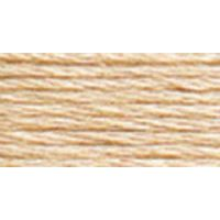DMC Six Strand Embroidery Floss (3774) NOTM012982