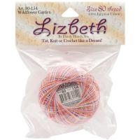 Lizbeth Cordonnet Cotton Crochet Thread - Wildflower Garden (154) NOTM050828