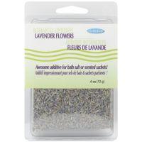 Flower & Seed Herbs NOTM411428