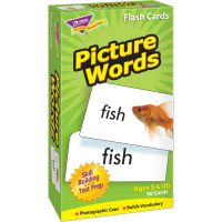 Picture Words Skill Drill Flash Cards TEPT53004