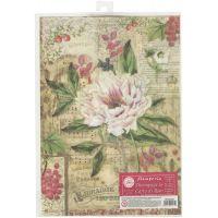 Stamperia Rice Paper Sheet A4 NOTM257548