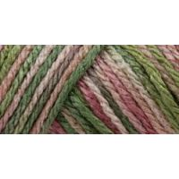 Caron Simply Soft Paints Yarn - Rose Garden NOTM065148