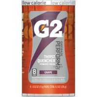 Gatorade G2 Purple Single Serve Powder Packets QKR13167