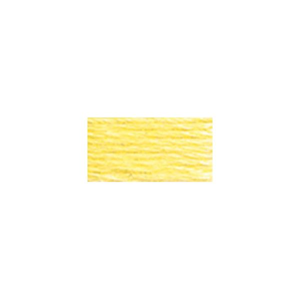 DMC Six Strand Embroidery Floss (445)