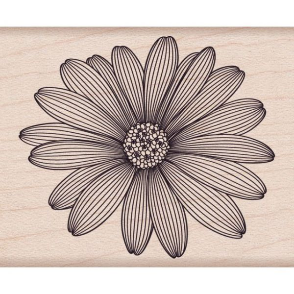 "Hero Arts Mounted Rubber Stamps 2""X2.5"""
