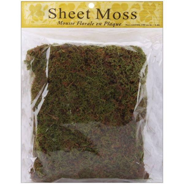 Spanish Sheet Moss
