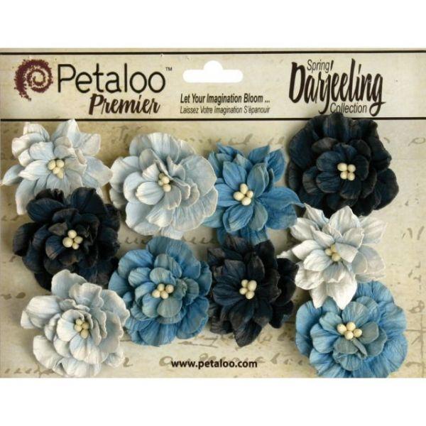 Darjeeling Teastained Dahlia Flowers 10/Pkg