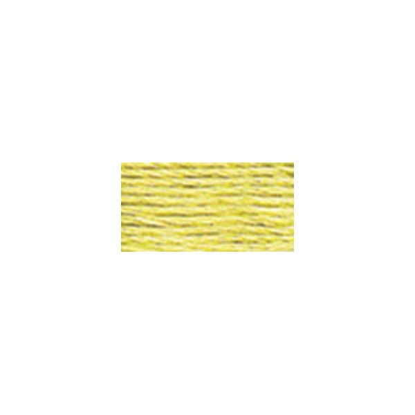 DMC Six Strand Embroidery Floss (165)