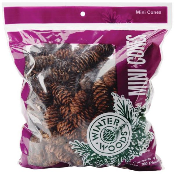 Natural White Spruce Pine Cones 4oz/Pkg