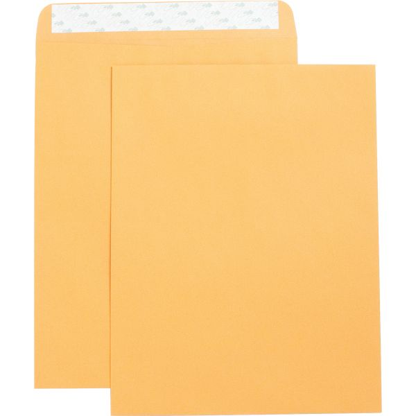 "Business Source 10"" x 13"" Catalog Envelopes"