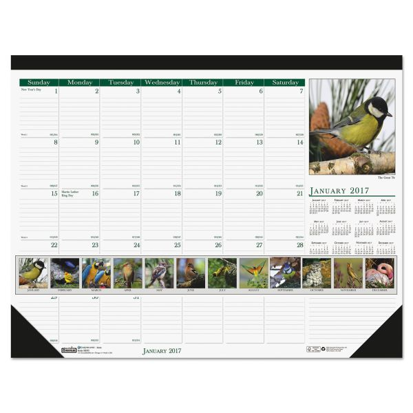 House of Doolittle Wild Birds Photographic Monthly Desk Pad Calendar
