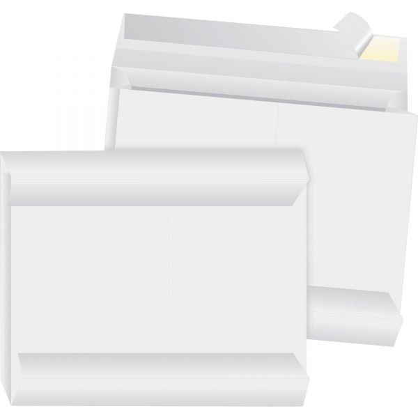 "Business Source 12"" x 16"" Tyvek Envelopes"