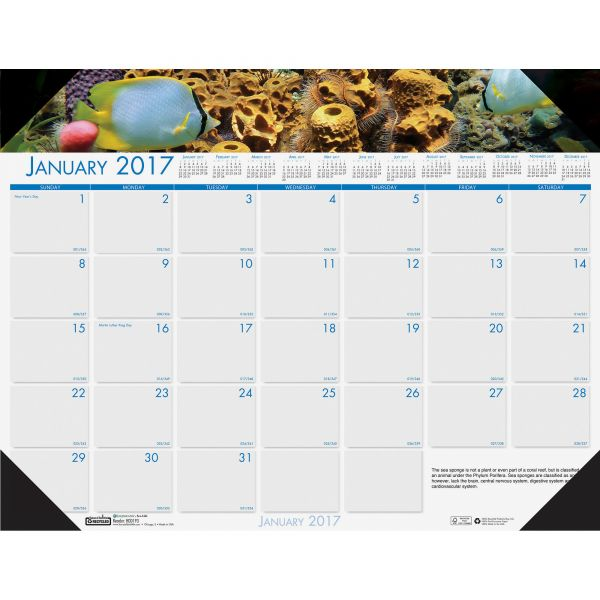 House of Doolittle Earthscapes Sea Life Monthly Desk Pad Calendar