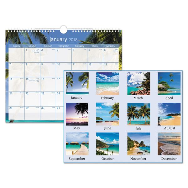 AT-A-GLANCE Tropical Escape Monthly Wall Calendar