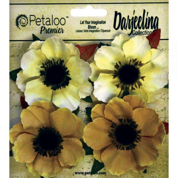 "Darjeeling Anemone Flowers 2"" 4/Pkg"