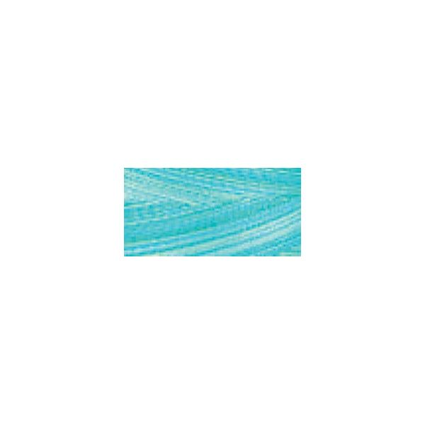 Signature 41 Cotton Variegated Colors 700yd