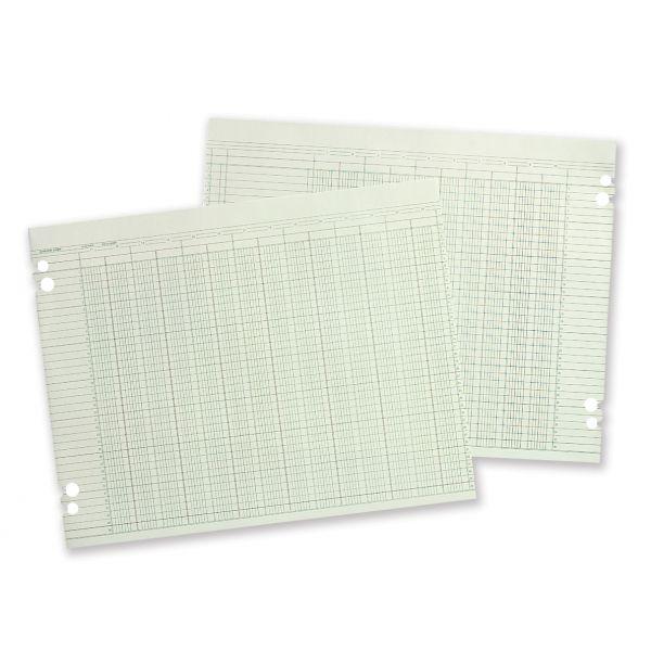 Wilson Jones Accounting Sheets, 10-Col, 9-1/4 x 11-7/8, 100 Loose Sheets/pk, GN