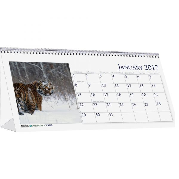 House of Doolittle Wildlife Photos Monthly Desktop Tent Calendar