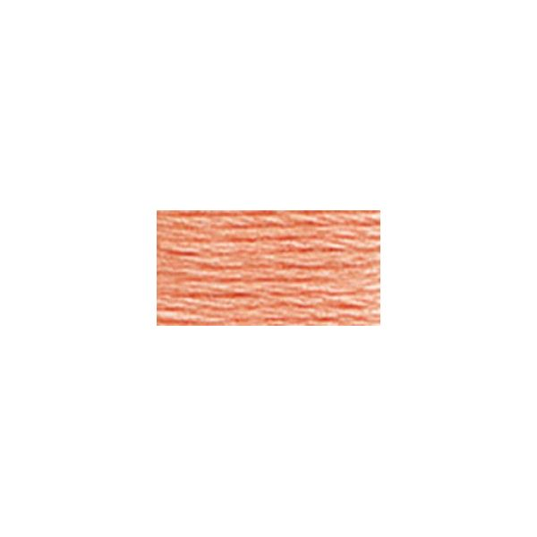 DMC Six Strand Embroidery Floss (3824)