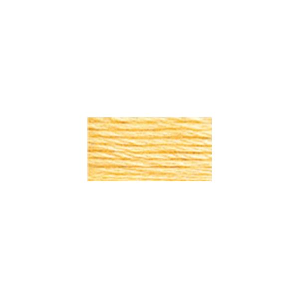 DMC Six Strand Embroidery Floss (745)