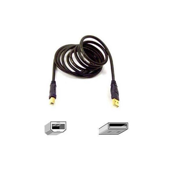 Belkin USB 2.0 Cable