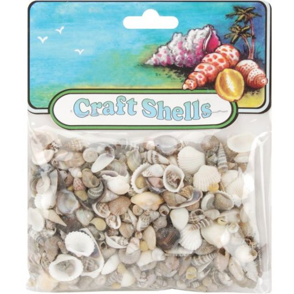 Craft Shells 50/Pkg