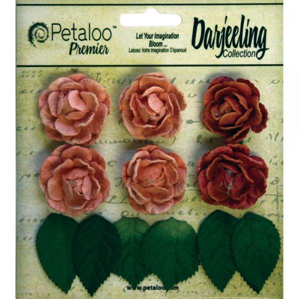 """Darjeeling Mini Garden Rosettes 1"""" 6/Pkg"""