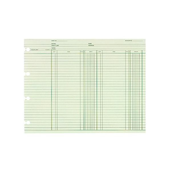 Wilson Jones Accounting Sheets