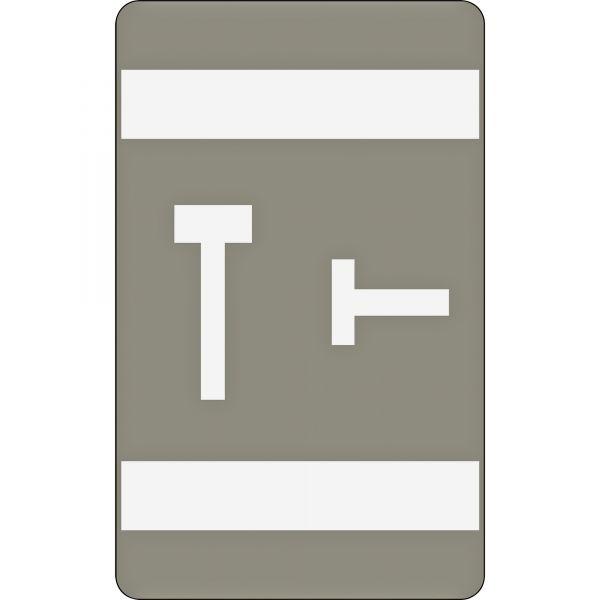 Smead AlphaZ ACCS Color-Coded Alphabetic Label - T