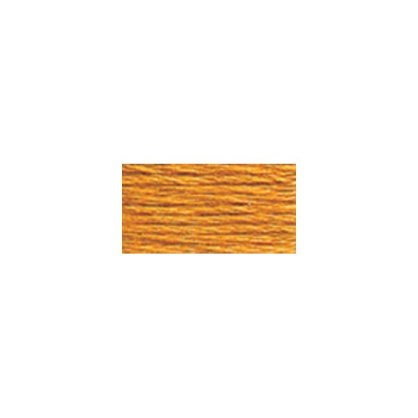 DMC Six Strand Embroidery Floss (977)